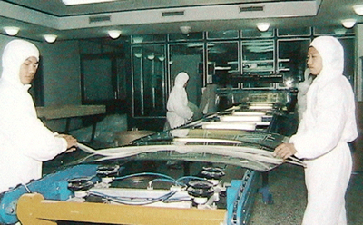 Windshield or Curve Laminated Glass PVB Assembly Line